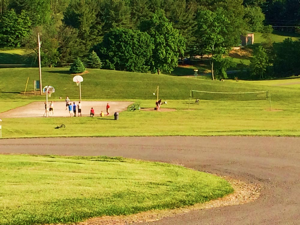 volleyball basketball court